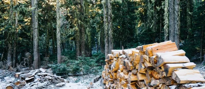 Drva za ogrev poskupela, evo i koliko