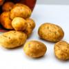 Uvozimo krompir za 7,5 miliona evra godišnje