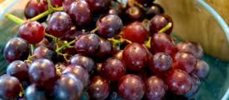 Udvostručen promet grožđa na Veletržnici