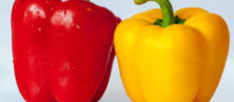 Novi srpski brend - paprika