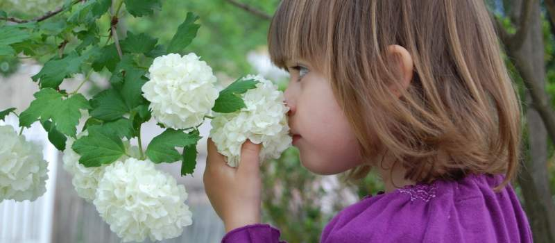 Osiguranje đaka u školi: Na šta da obratite pažnju
