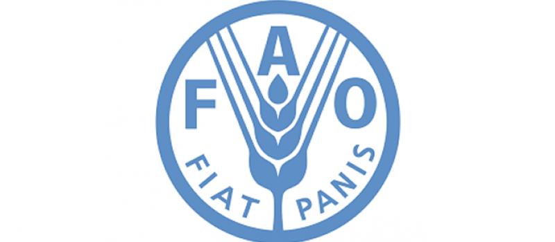 FAO: Rast globalnih cena hrane u martu