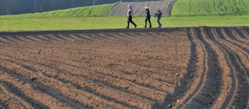 Poljoprivrednici, osigurajte se: Polisa ublažava štetu