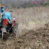 Izostanak osiguranja sada skupo košta poljoprivrednike