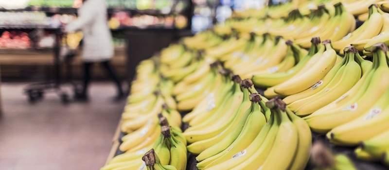 Pored šljiva i jabuka u Čačku sada rađaju i banane