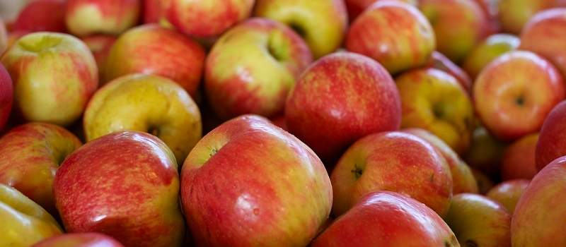 Jabuke u Srbiji se prskaju 16 puta, a standard je tri
